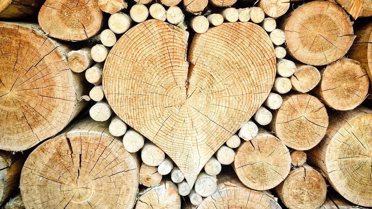 I tipi di legno per arredamento mariano cucine for Tipi di arredamento